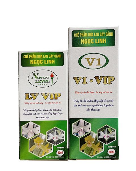 LV VIP ( V1 VIP )